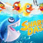 Shark Dash (Spiel der Woche)