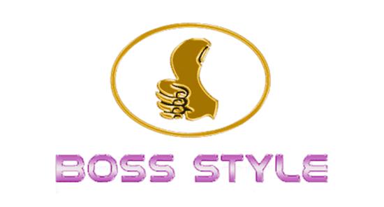 Boss Style Usb Driver