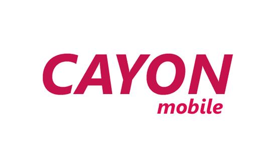 Cayon Usb Driver