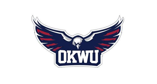 Okwu Usb Driver