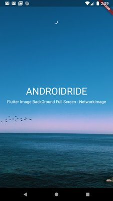 fullscreen image using URL (NetworkImage)
