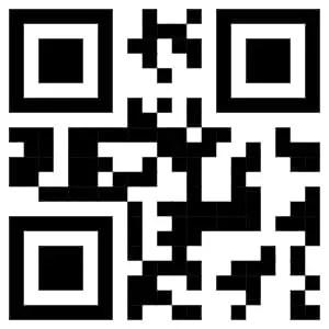 qr code flutter example