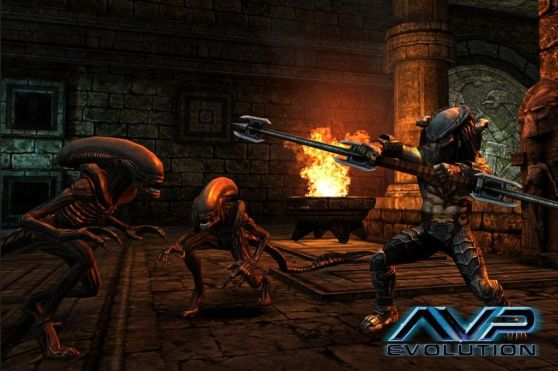 avp-evolution1