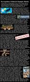 corruption a quick sample guide