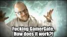 fucking gamergate