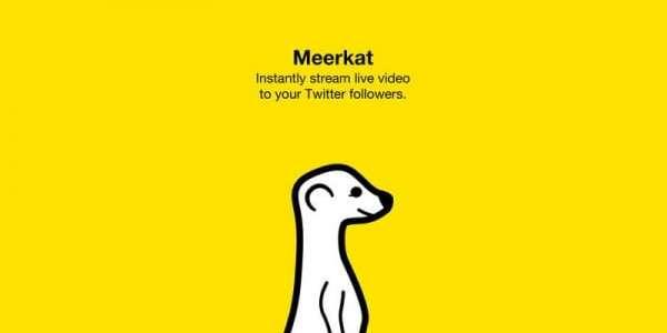 Meerkat ya en Google Play