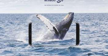 Comienza la global pre-sale del Bluboo S8, con pantalla 18:9 y cámara dual trasera Sony desde 79$