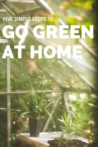 simple steps to go green at home