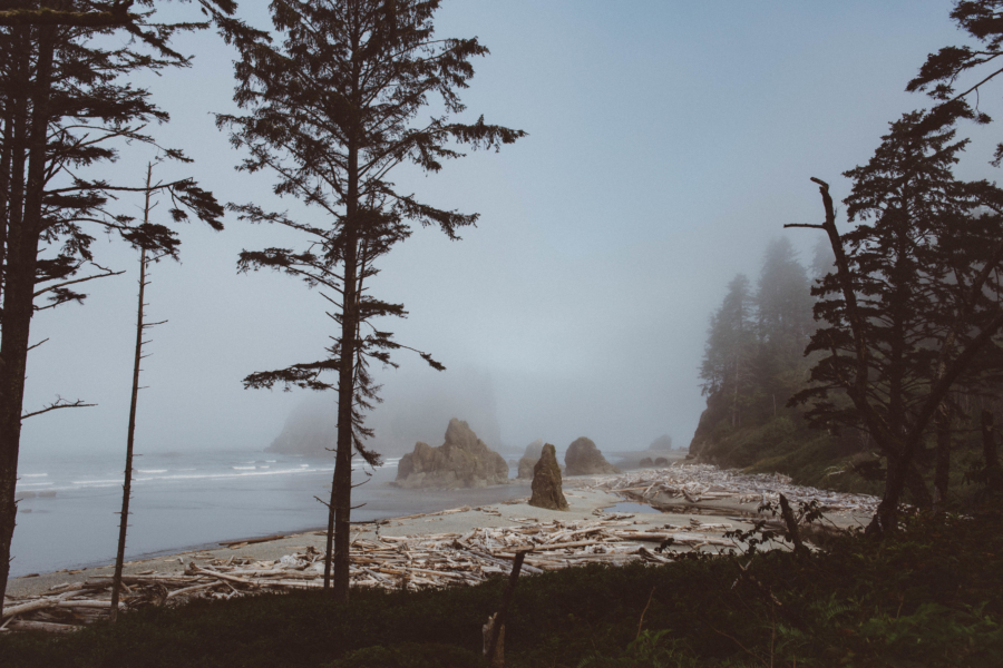 PNW Road Trip Ruby Beach Olympic Peninsula Washington