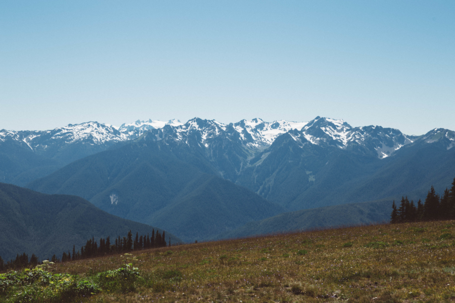 PNW Road Trip Hurricane Ridge Olympic Peninsula