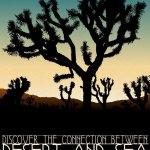 Andy Rader: Travel Postcard: Joshua Tree
