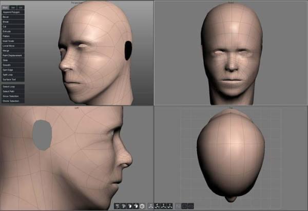 Basic Head (382 Faces)