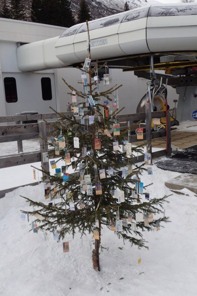 Christmas Tree decorated with past Season's Passes