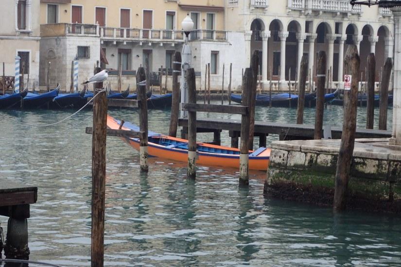 Orange Gondola?