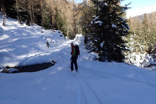 Very narrow logs crossing streams!