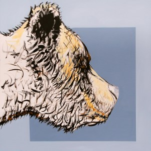Grizz Profile, size 36x36 in., canvas giclée print available in size S1,S2,S3