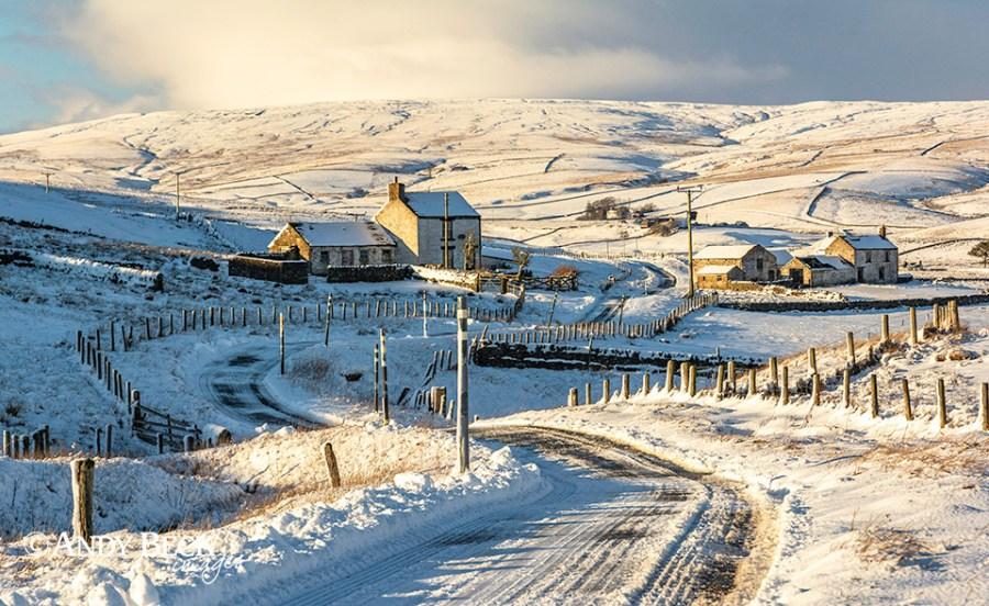 Harwood winter