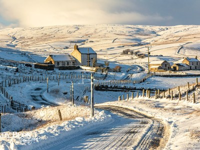 Harwood winter