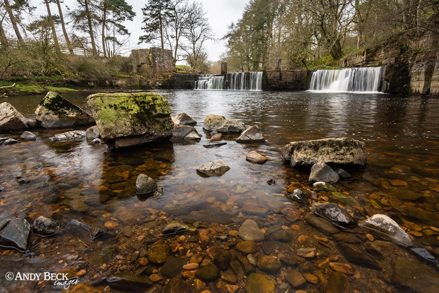 Mill Force