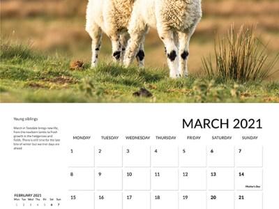Teesdale calendar 2021 March