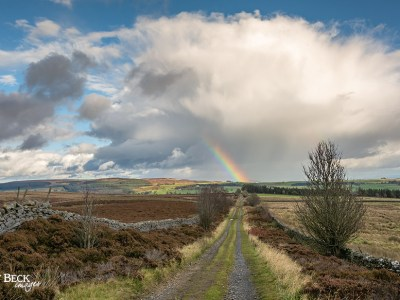 Rainbow at the end of the lane