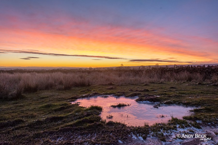 Christmas day dawns, Cotherstone Moor