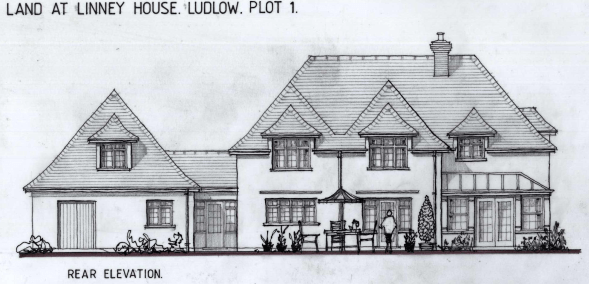Controversial plans for three houses on the Linney run into trouble over flooding and trees