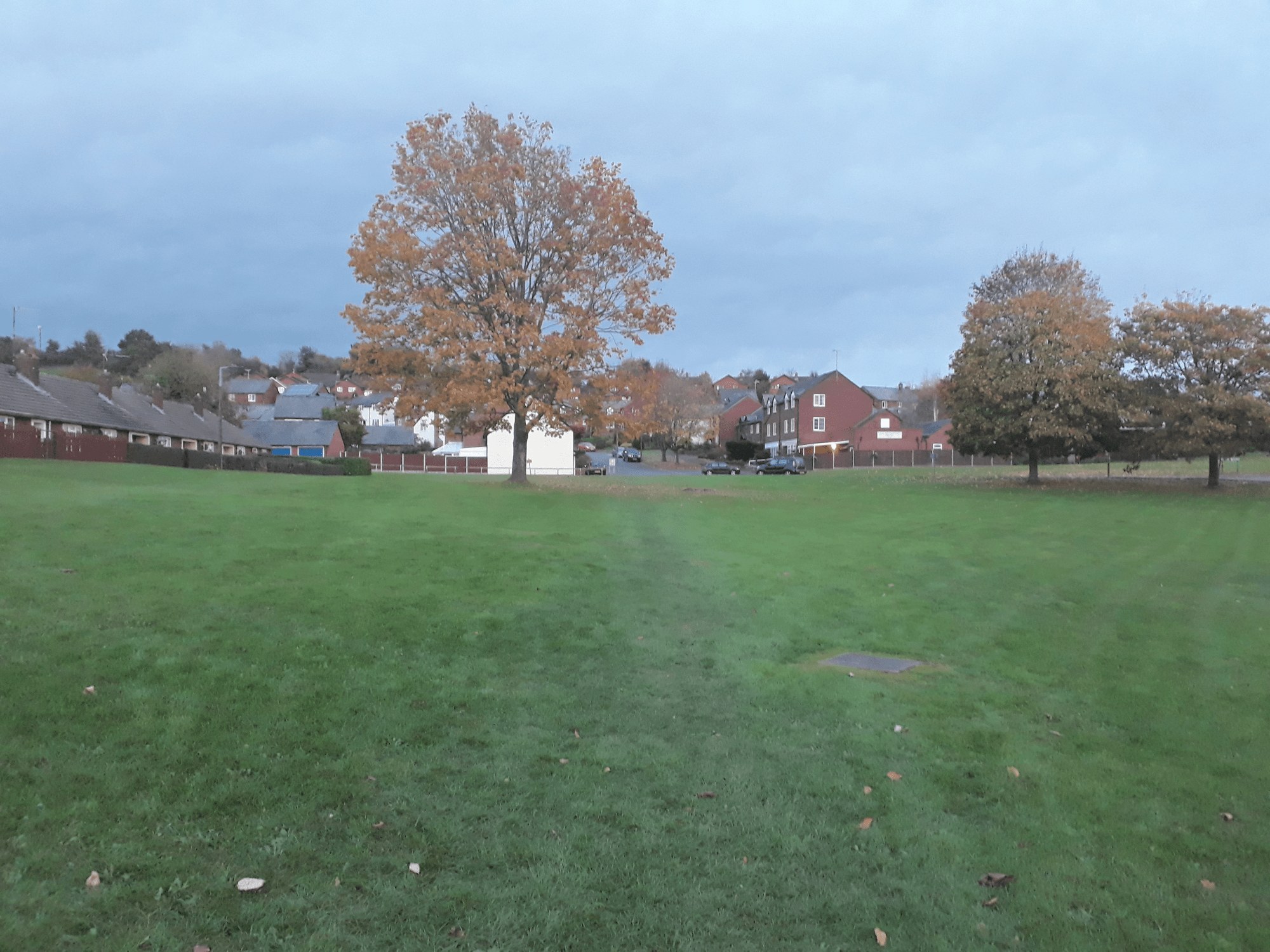 Hurrah! Ludlow Town Council to buy Sidney Road Green for a nominal sum and protect it forever