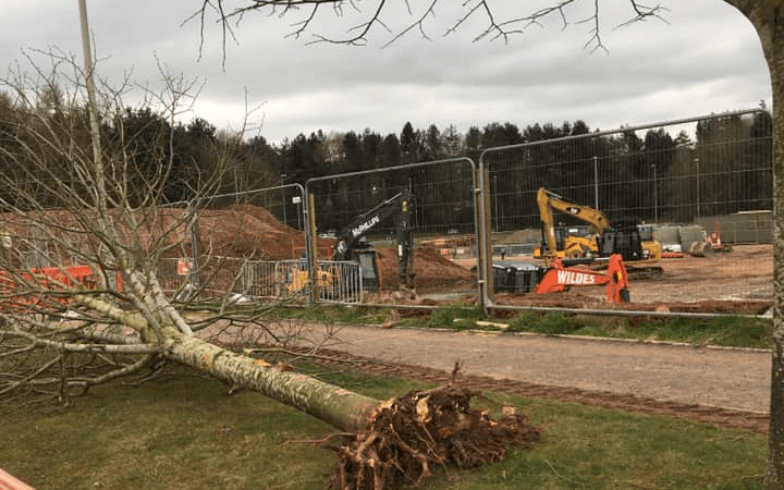 We are losing trees and biodiversity in and around Ludlow (1) – it's a failure of the planning system