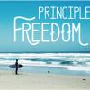 5 Principles to Finding Freedom on AndyBOndurant.com