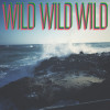 The wild, potent and grand Pacific Ocean on Andy Bondurant