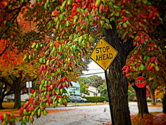 Fall image with Stop Sign