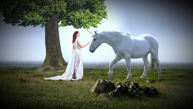 Woman Queen Human Horse Animal