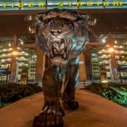 LSU Tiger football pride