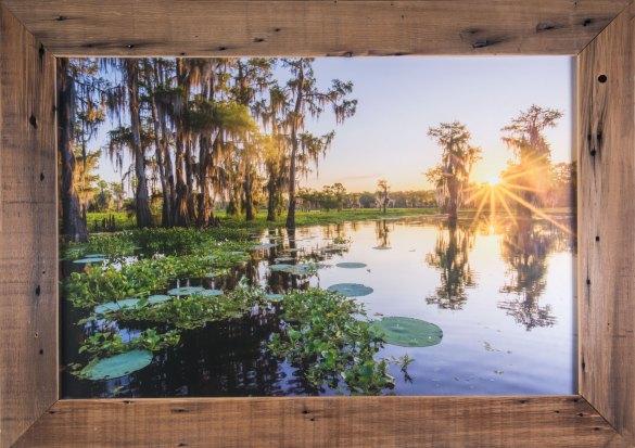 Atchafalaya Basin sunrise photo for sale