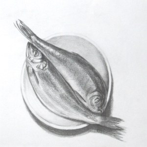 Two Fish - Graphite on paper