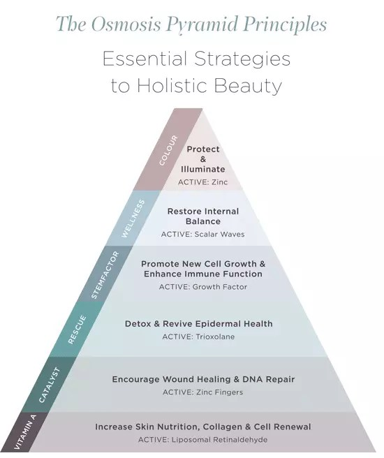 osmosis skin care holistic pyramid