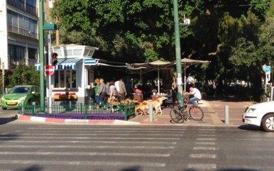 Tel Aviv Yafo