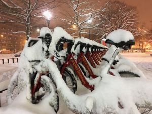 Photo of Capitol Bikeshare bikes in snow at night