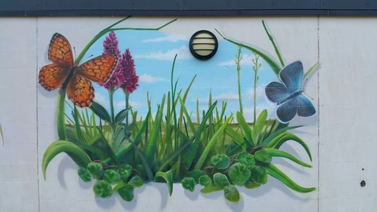 Progress on my mural at Kenfig NNR