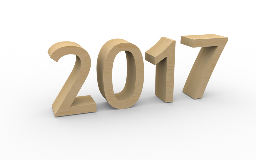 The World of AI – 2016 in Review and Predictions for 2017