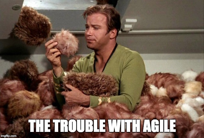 Agile Does Not Scale, But It Replicates Well