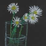 Daisies - Eibhlin Murphy