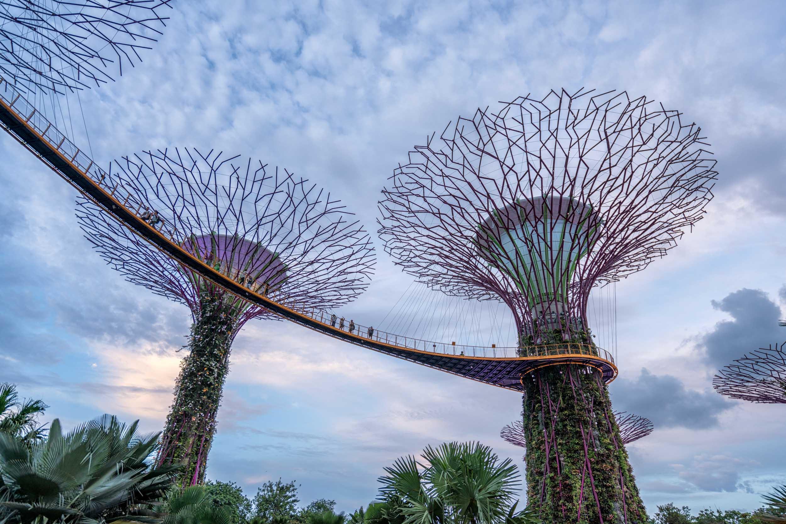 Singapore Travel Blog Usa