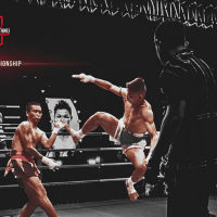 Voice Over Andy Taylor. Television Commercial. World Lethwei Championship Promo