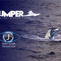 Andy Taylor Voice Over. Thumper Bluewater Expeditions 2019