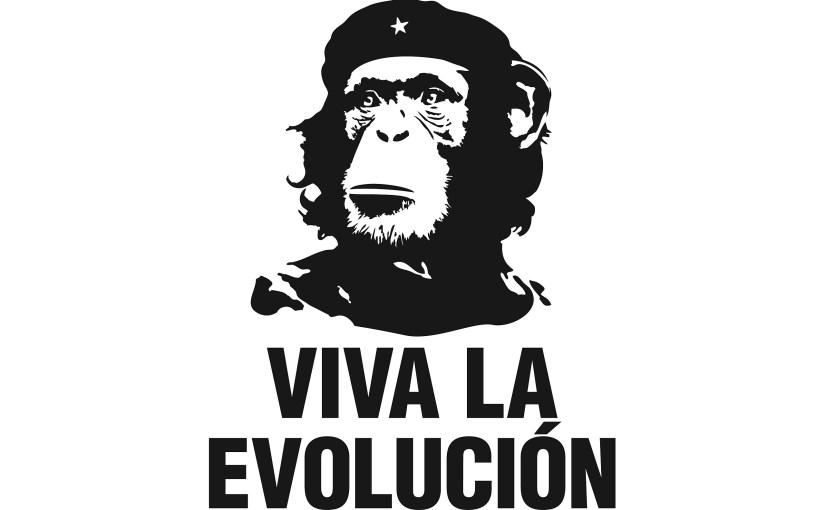 Evolution of Consciousness?