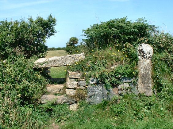 The Hedge and the Stone Stile.