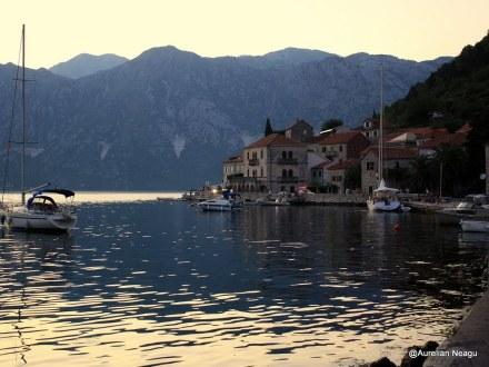 Montenegro 785