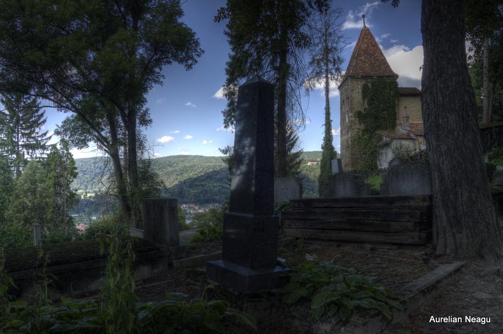 Cimitirul_Sasilor_Sighisoara-15